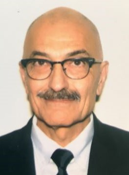 photo of Mehrzad Mahdavi, Ph.D.